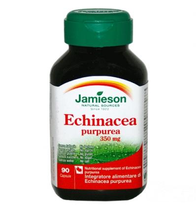 Echinacea purpurea 90cps
